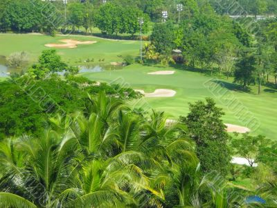 lovely golf course greenery