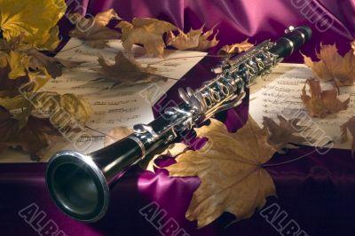 Melody of a mellow autumn