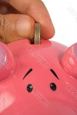 business savings on piggy bank - closeup