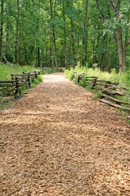 Wood Chip Trail