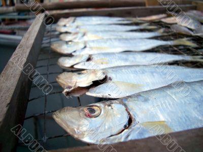 salty dried fish