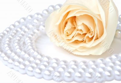 White rose and pearl necklace