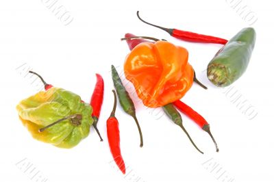 chili mix on white