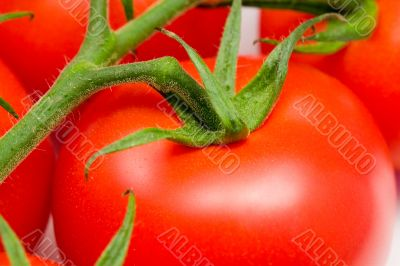 close-up of a red tomato on a stem