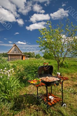 Picnic Barbecue in a Garden