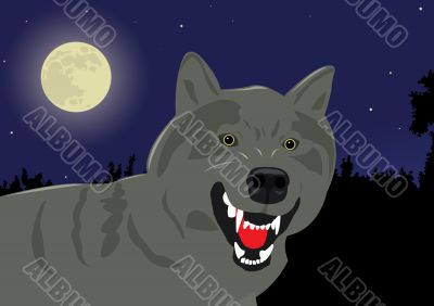 the growling wolf