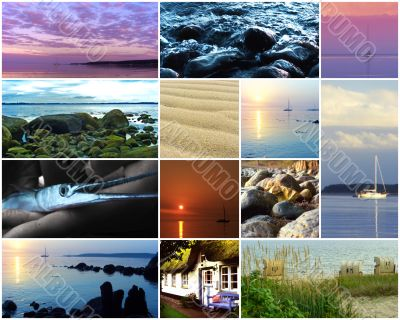 cllection of sea images