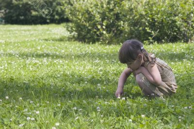 Little girl in meadow