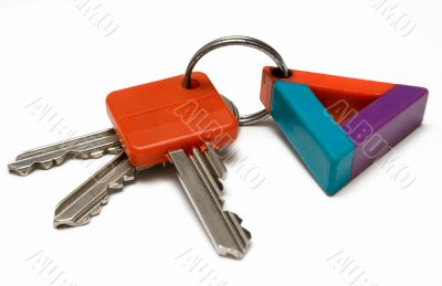 Bunch of Keys w/ Colorful Tag