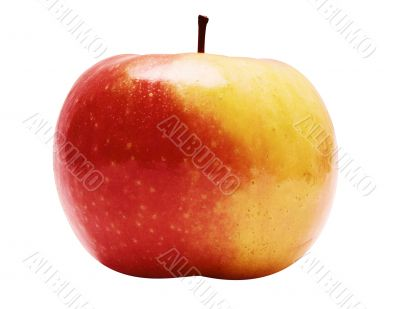 Red-Yellow Apple w/ Path - Side View