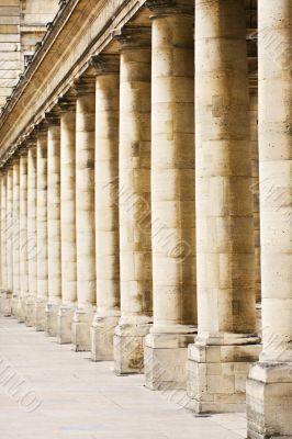 Columns Palais Royal