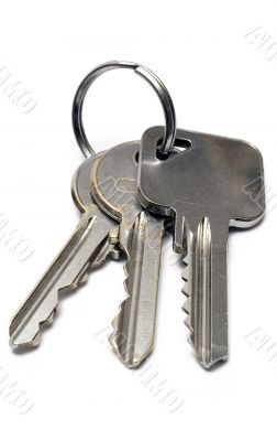 Three Apartment Keys w/ Ring - Front View