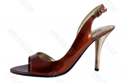 Ladies high heel shoe