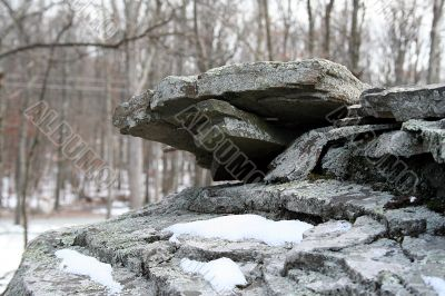 Boulder in the woods