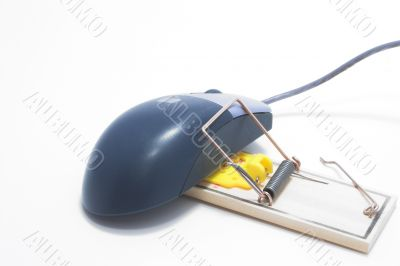 Trapped Computer Mouse