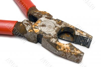 Close View on Corroded Pliers