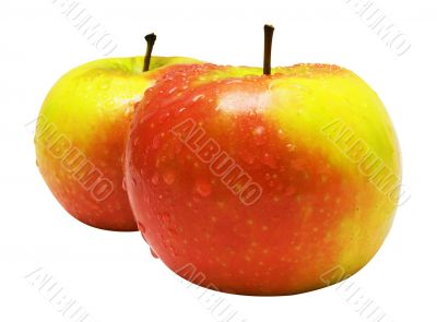 Two Red-Yellow Apples w/ Raindrops - Path Included