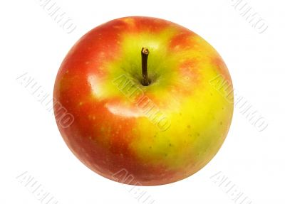 Red Yellow Apple w/ Path - Angle View