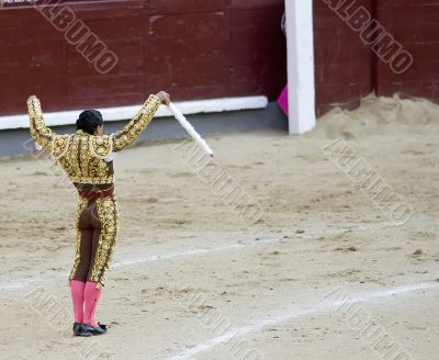 Banderillero Preparing to Strike