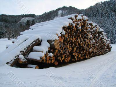 Snowy pile of wood