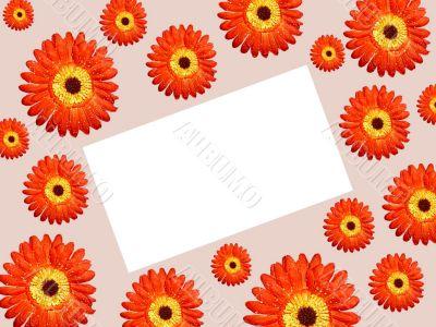 borders daisy paper tilt right