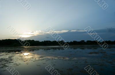 Swamp Sunset.