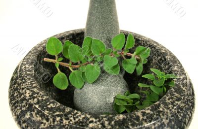 Mortar And Pestle With Oregano