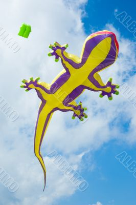 big lizard kite fly in blue summer sky