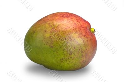 Red and green mango isolated on white
