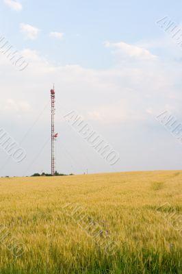TV tower - far view