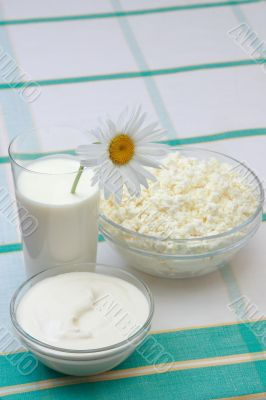 Milk, sour cream and cottage cheese