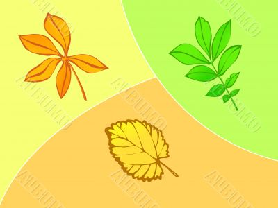 Three leaves, autumn,season