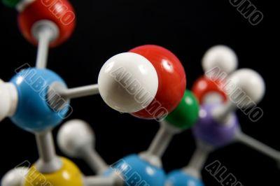 A biochemistry model