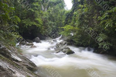 Tropical Rainforest Stream