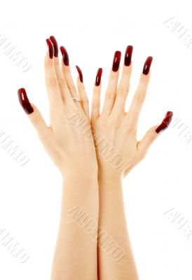 two hands with long acrylic nails