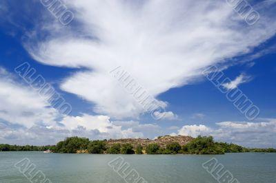Mangrove Swamp Coastline