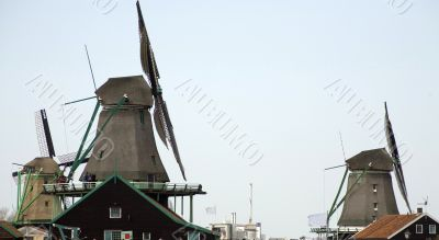 traditional windmills in Holland