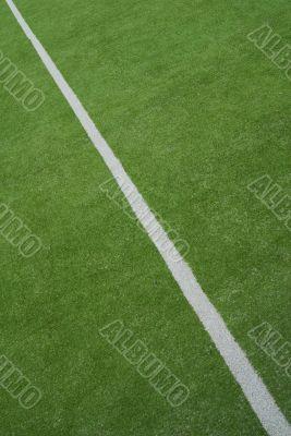 White line on a sportfield