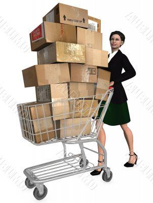 Shopper Shopping Cart Shipping Cartons