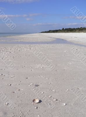 Beautiful sandy beach in Florida USA