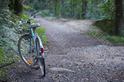 gravel path with bike