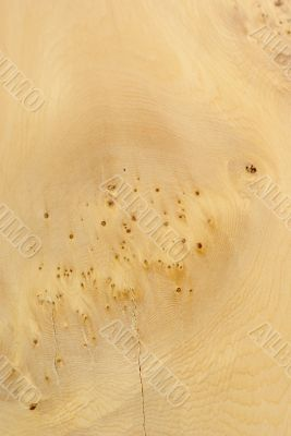 Wood Texture: Unknown Pale Wood
