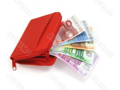 Euros and wallet