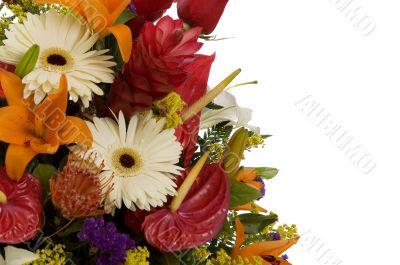 Exotic flowers arrangment II