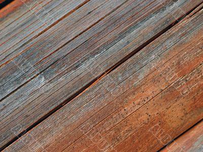 cracked old log