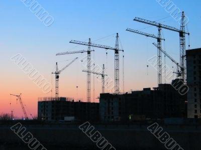 sunset cranes