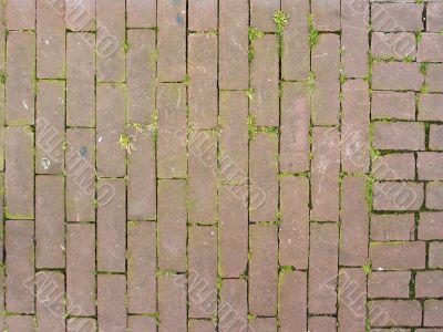 pattern of bricks and grass
