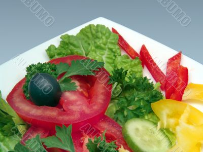 Dietic salad  on white plate