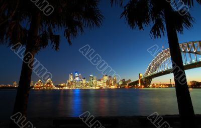 Sydney tropics panorama