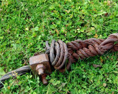 Rust armature in grass